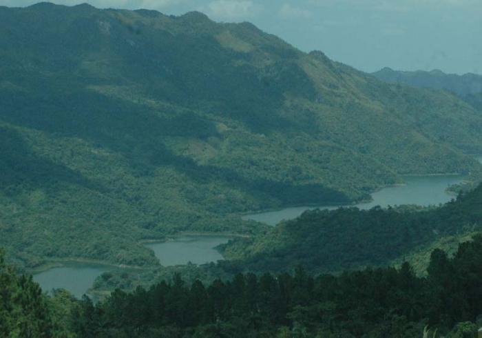 Wälder in Pinar del Rio