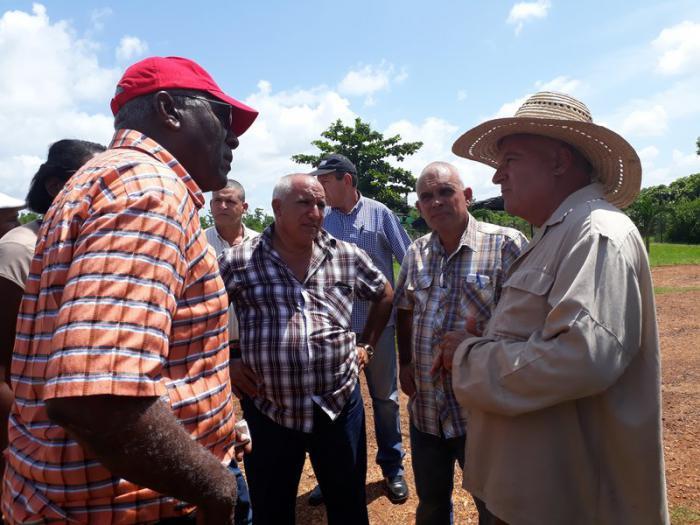 Produzenten landwirtschaftlicher Produkte in der Provinz Mayabeque